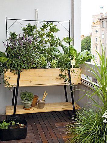 Balkon fertig bepflanzen und begrünen
