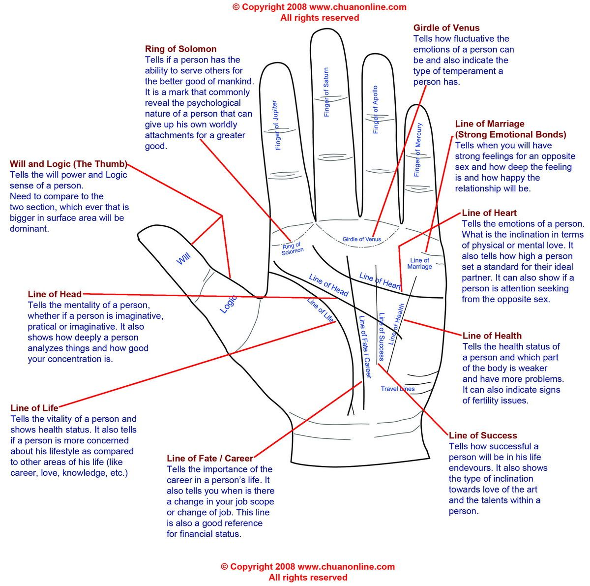 Believe In This Stuff Or Not Palm Reading Is Always An Impressive Party Trick With All The Gatherings Coming Way Should Be Fun To Memorize