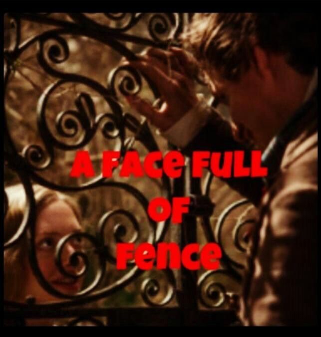 A Heart Full Of Love A Face Full Of Fence Les Miserables Face