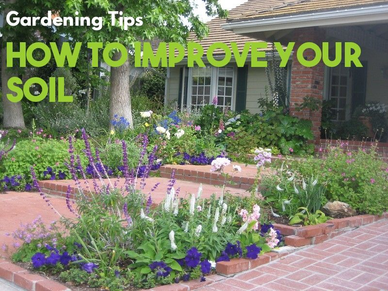How To Prepare Soil For Gardening Cottage Garden Cottage Garden Design Garden Design
