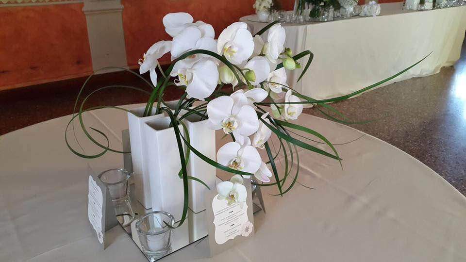 Matrimonio Tema Orchidee : Centrotavola con orchidee matrimonio villa tacchi padova