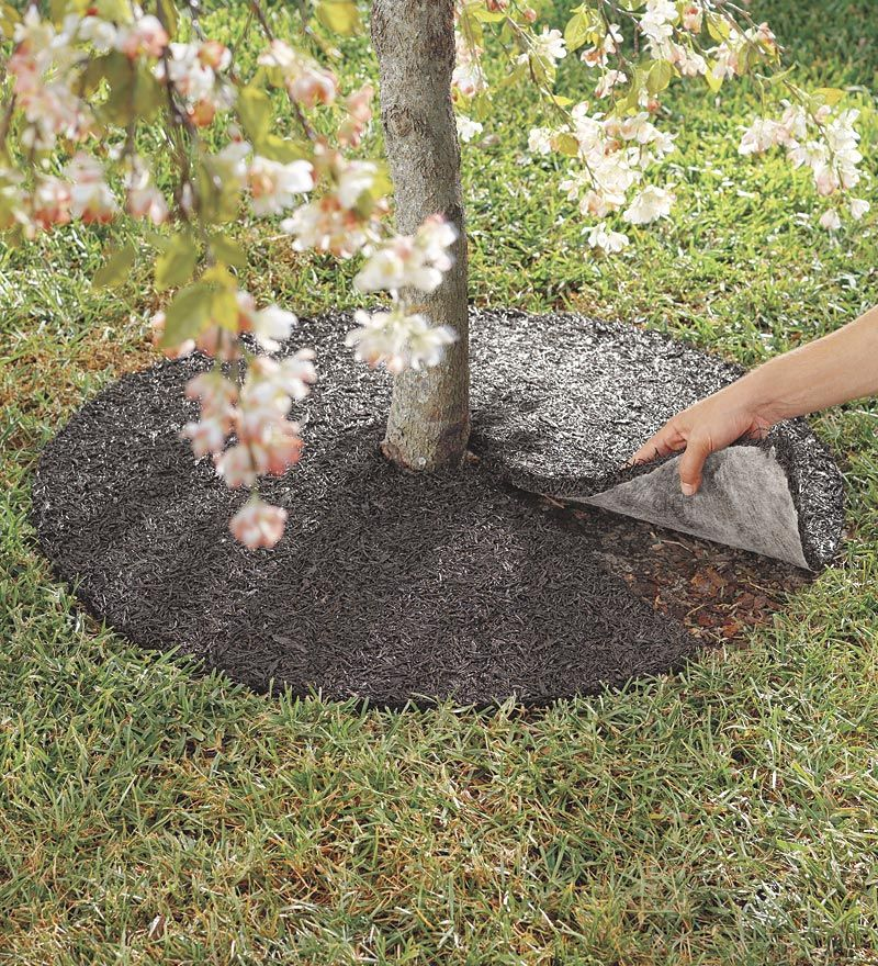 Perma Mulch Recycled Rubber Tree Ring - Plow & Hearth 39
