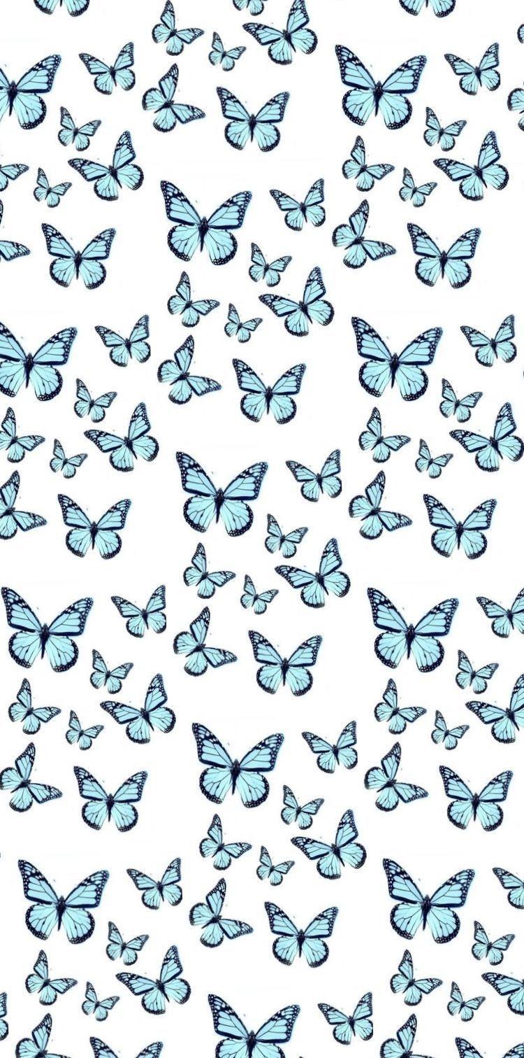 Vsco water android blue water. pinterest @elizaamaples 🦋 in 2020 | Butterfly wallpaper ...