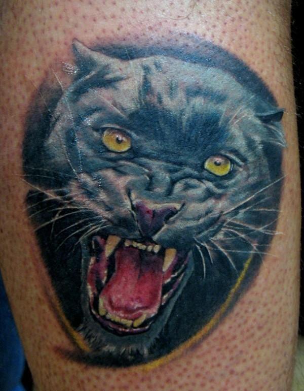 буровых фото тату оскал кошки можете выбрать
