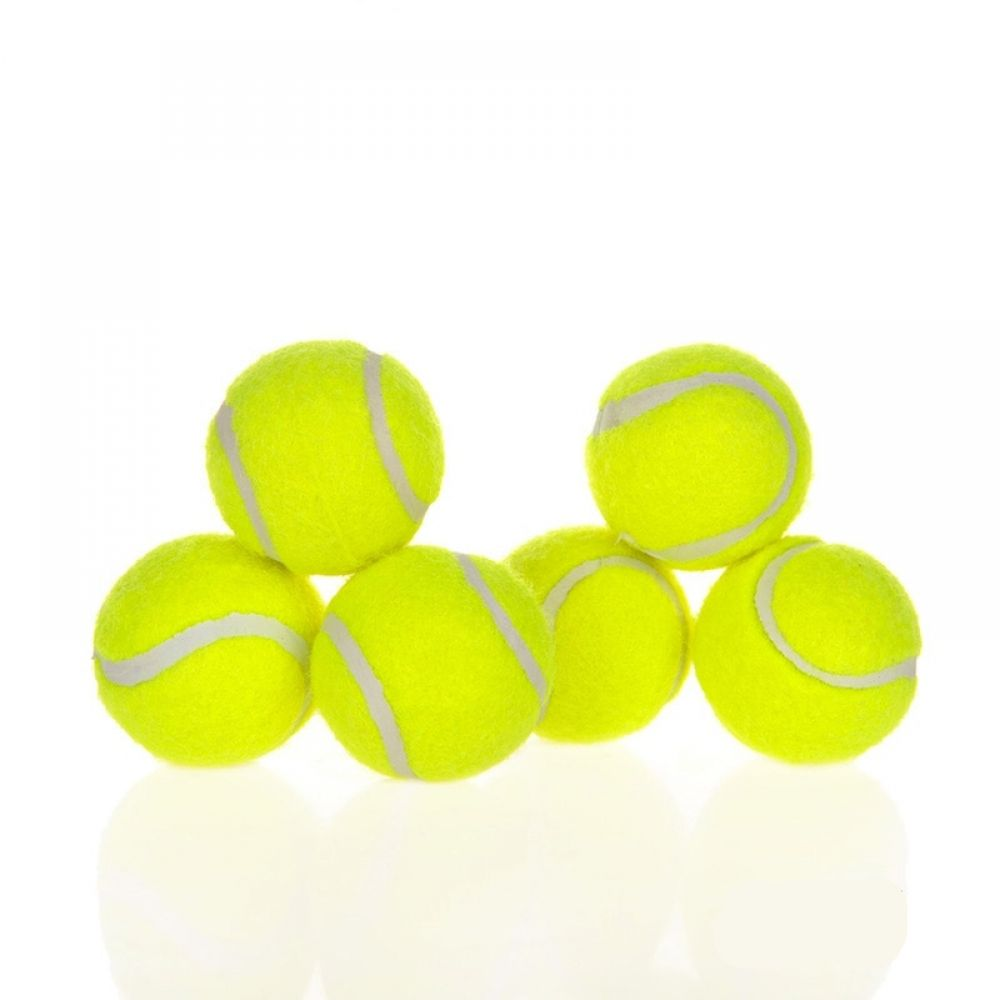 Bite Resistant Dog Tennis Ball Toys Set Tennis Dogs Dog Toys