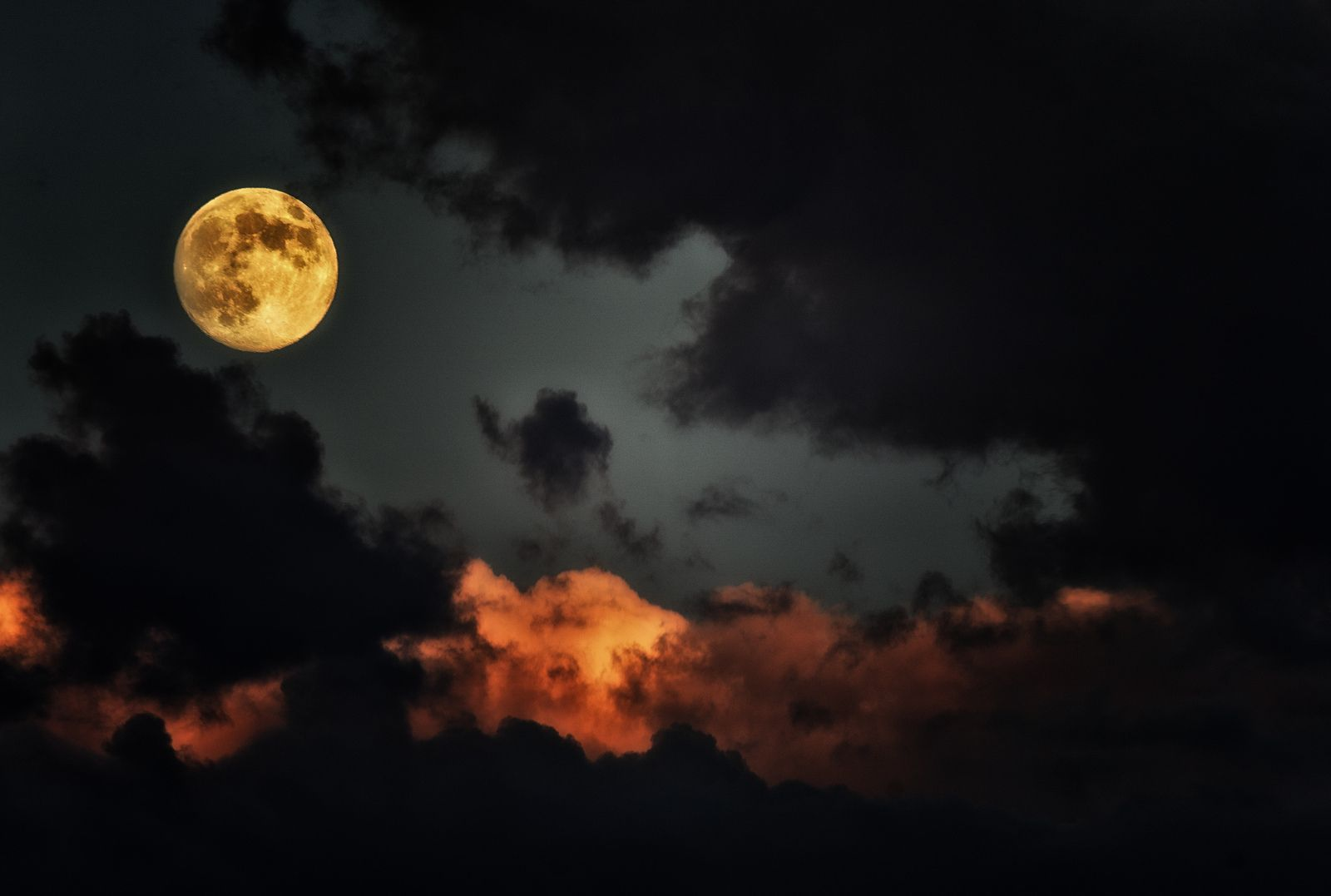https://flic.kr/p/fySaeb | Cloudy | Coyote Hills RP, Fremont, CA