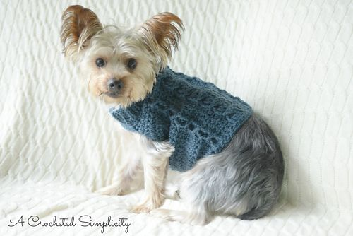 This Stylish Cabled Dog Sweater Was Designed For The Lion Brand Yarn