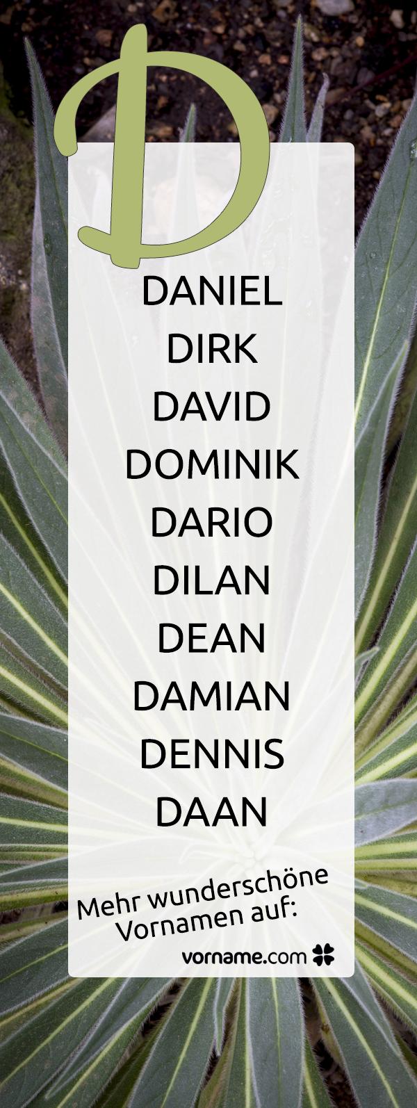 Jungennamen Mit D