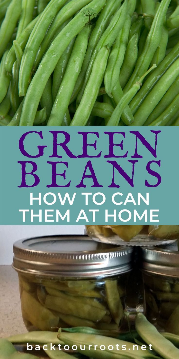 How to Can Green Beans {Easy Step by Step} Green beans