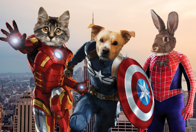 Custom Superhero Gift~Personalized Marvel Avengers pet portrait~Pet Art~Cat gift~Dog gift Superhero