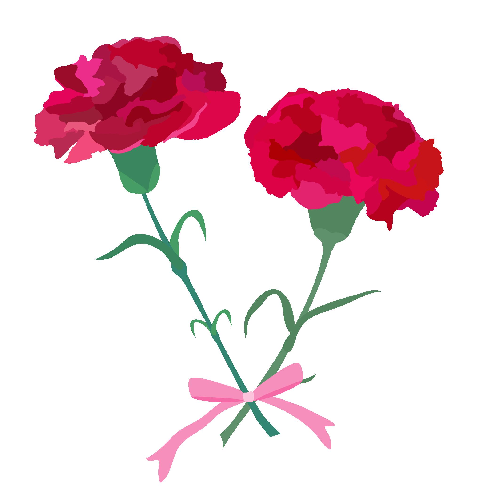春におすすめの商用利用可能な無料イラスト素材 21 カーネーション イラスト イラスト 花束 カーネーション