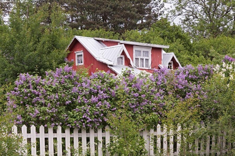 Pin von pine wood auf gartenhaus pinterest haus - Skandinavisches gartenhaus ...