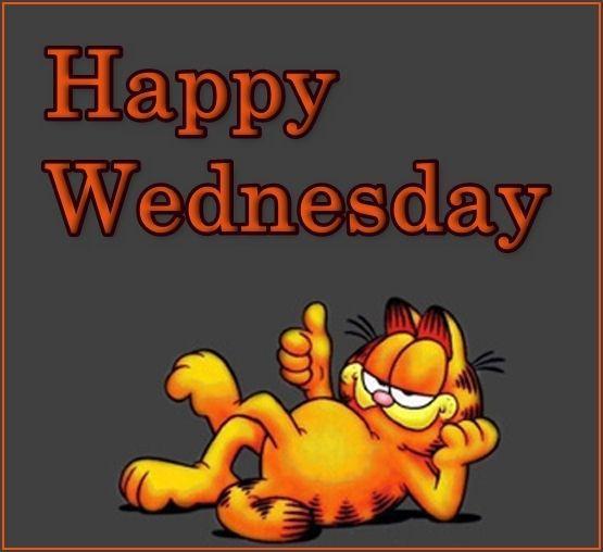 #wednesday | Garfield wallpaper, Garfield, Garfield cartoon