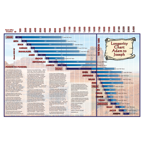 Large Bible Longevity Chart Bible Stories And Sunday