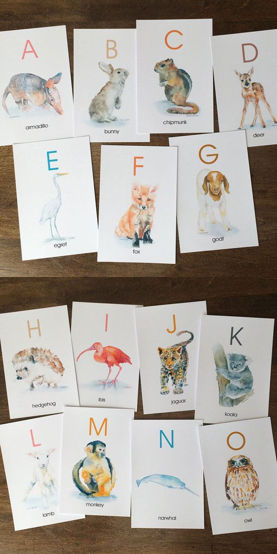 Animal Alphabet Flash Cards Watercolor Animals Abc Watercolor Flash Cards A Z Animal Alphabet Watercolor Animals Watercolor Paintings Of Animals