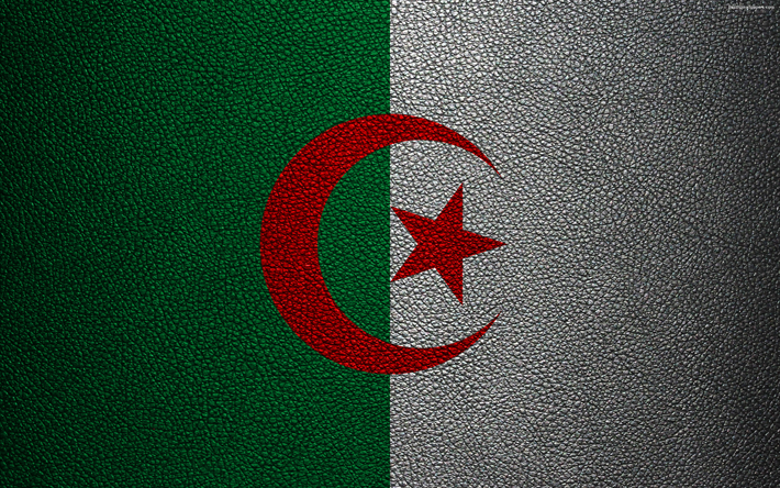 Download Wallpapers Flag Of Algeria Leather Texture 4k Algerian Flag Africa Flags Of The World African Flags Algeria Besthqwallpapers Com Algerian Flag Flags Of The World African Flag