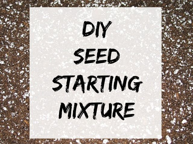 Seed Starting Mix Do you have a vegetable garden each year? It's a great way to enjoy fresh produce and save money. Another way to save yourself some money is to make your own DIY seed starting mix. The materials you use are easily purchased at your local garden center. These mixtures for making your own seed starting Read More...Do you have a vegetabl...