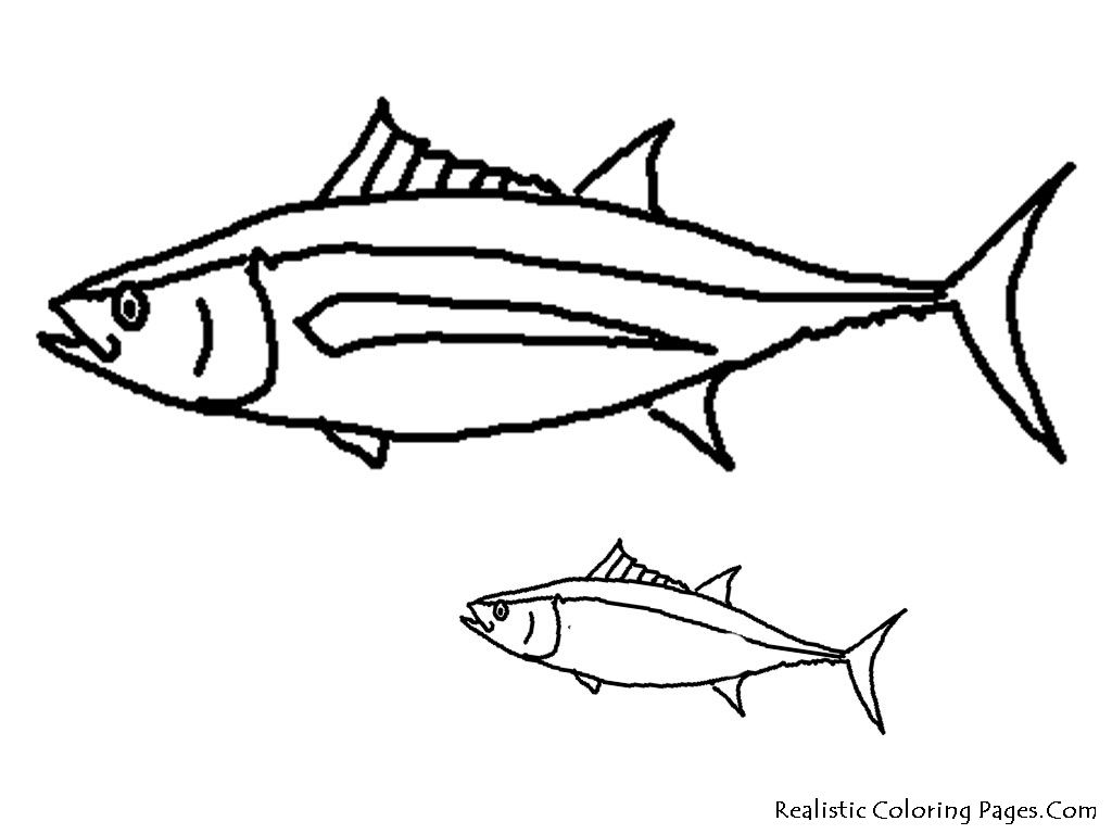 Tropical Fish Coloring Pages Fish Coloring Page Coloring Pages Tropical Fish