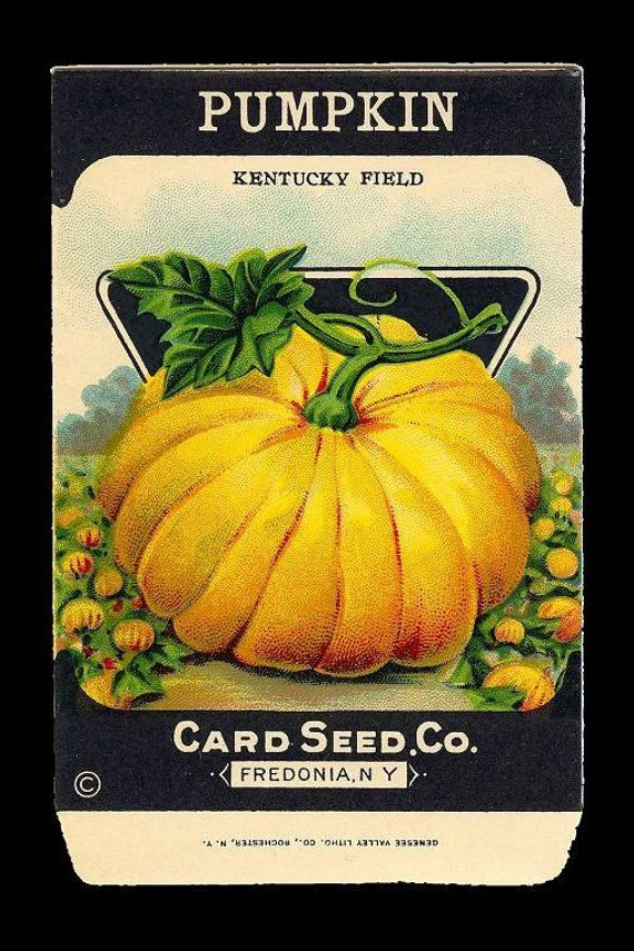 Instant Download Halloween Thanksgiving Pumpkin Seed Packet Post