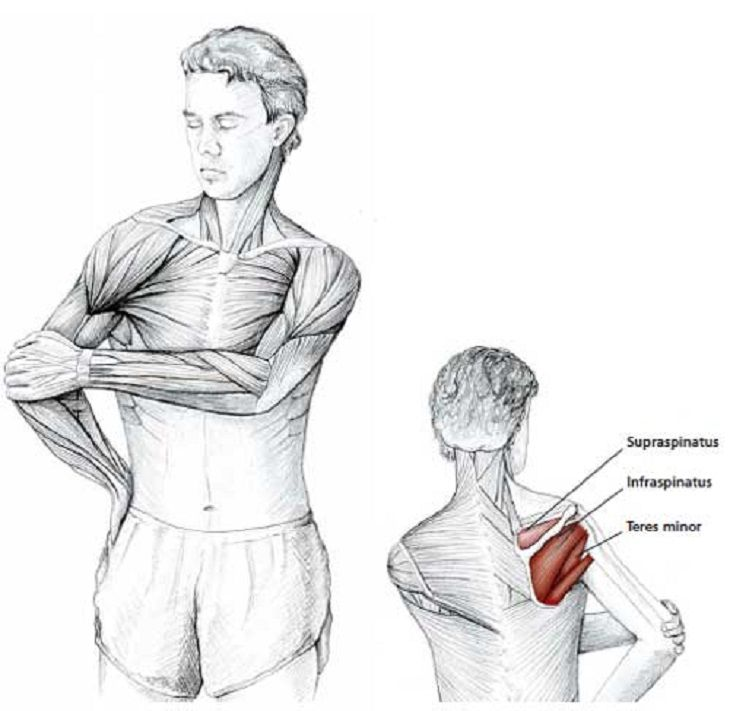 Easy Stretches - Release - Tension - Neck - Shoulders | healthy ...