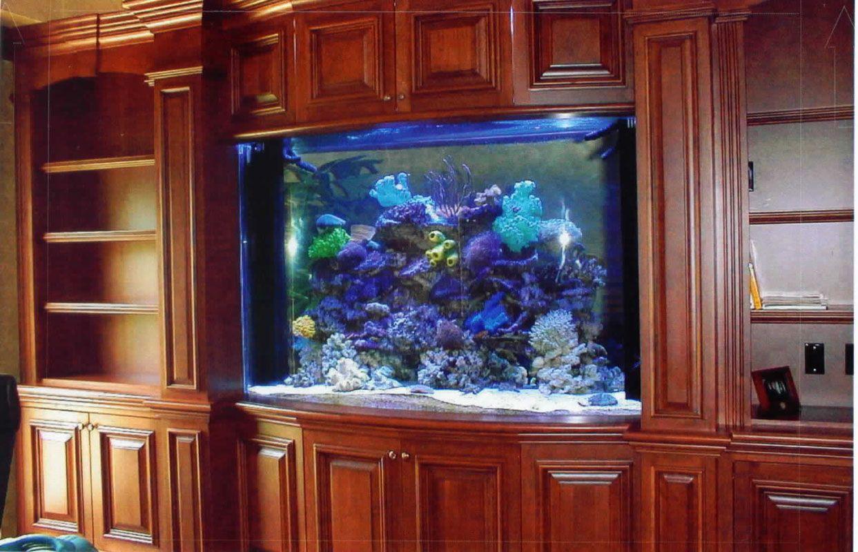 ответ большие домашние аквариумы фото свечи это