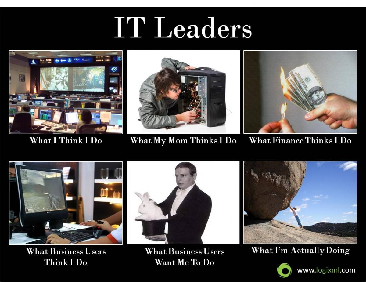 Infographic IT Leaders Information technology humor
