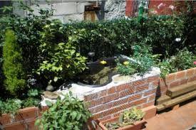 Jardines Plants Jardin Ideas Para