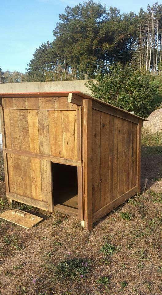 5x5 Reclaimed Dog House Goat House Puppy House Dog Houses