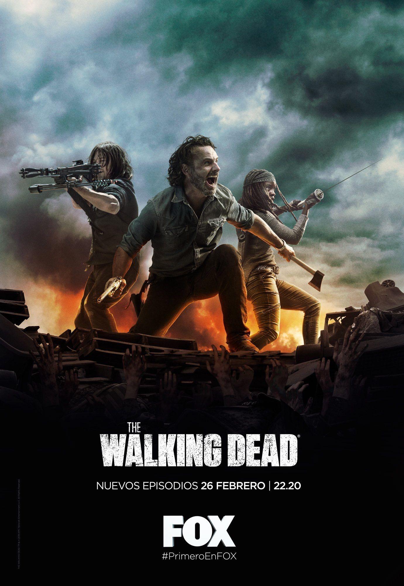 why isn't it AMC? The walking dead poster, Walking dead