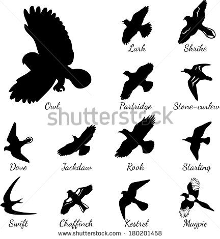 Sparrow Tattoo Silhouette Google Search Bird Tattoo Back Birds Tattoo Black Bird Tattoo