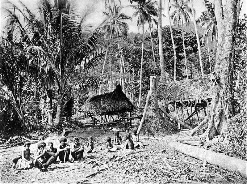 NARIA VILLAGE, SOUTH CAPE, NEW GUINEA.  Picturesque New Guinea Plate XLII - Naria Village, South Cape, New Guinea - Picturesque New Guinea/Chapter 12 - Wikisource, the free online library