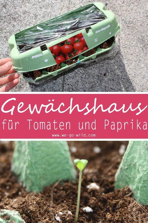 Tomaten Selber Ziehen Im Eierkarton Gewachshaus Garten Anpflanzen Garten Bepflanzen Und Garten Hochbeet