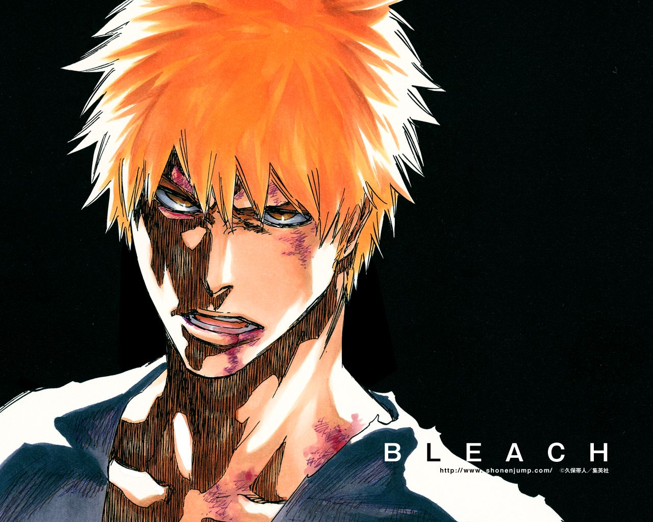 Ichigo: Bruised and strong...