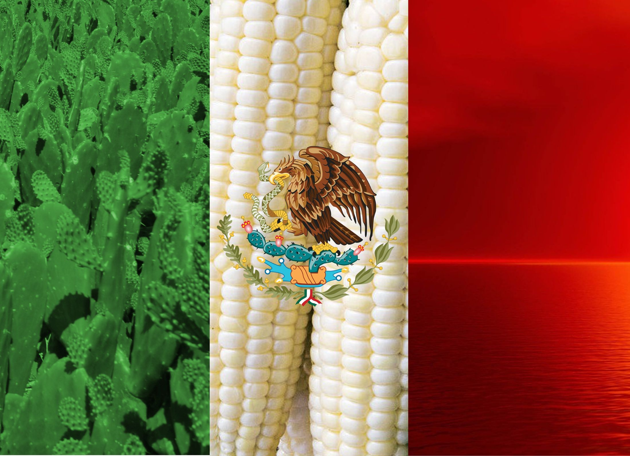 a proper mexican flag wallpaper  | viva mexico | pinterest
