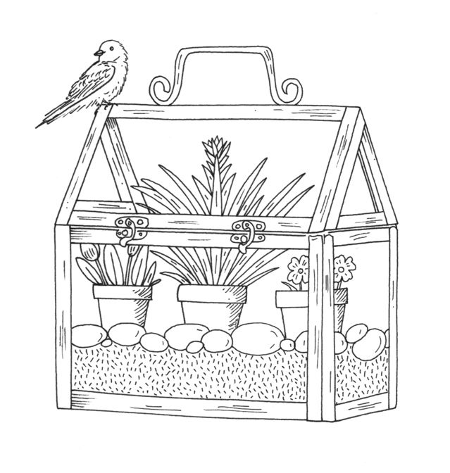 Miniature Greenhouse Illustration With Bird Emily Milne