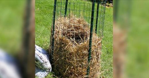 Gek Op Hay : Wij nederlanders zijn gek op aardappelen we koken bakken