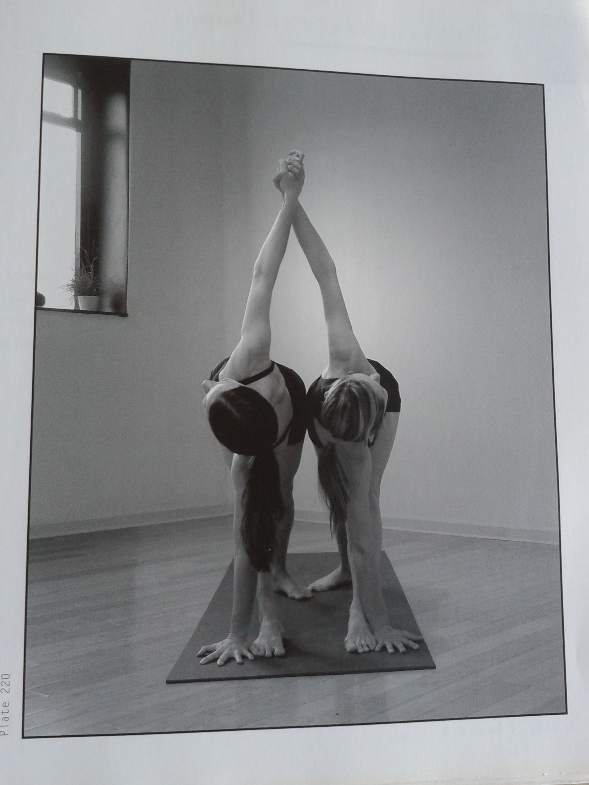 Standing Triangle Partner Pose Partner Yoga Poses Partner Yoga Couples Yoga
