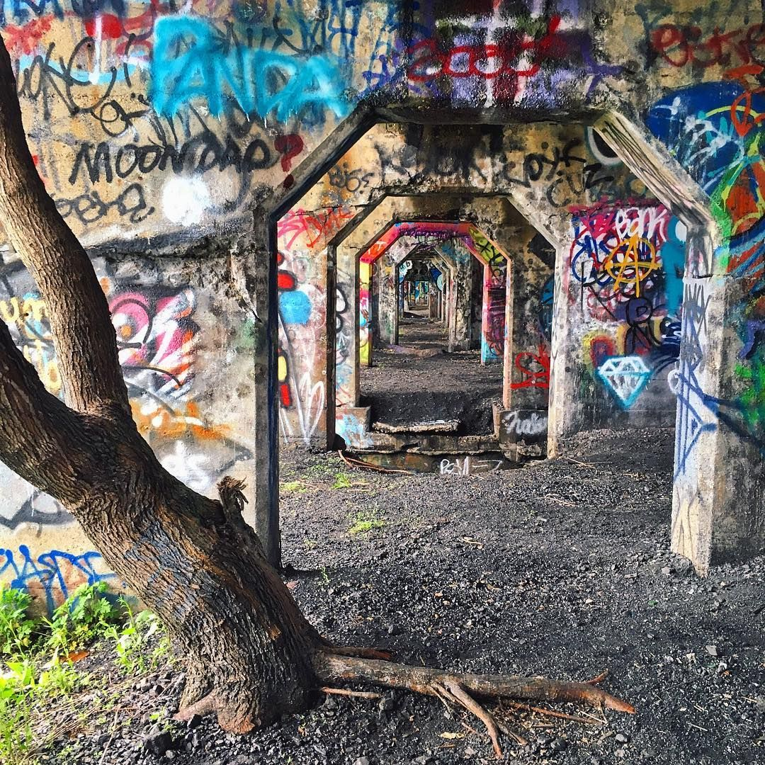The 11 Most Instagrammable Places In Philly Pennsylvania Travel Visit Philadelphia Philadelphia Things To Do