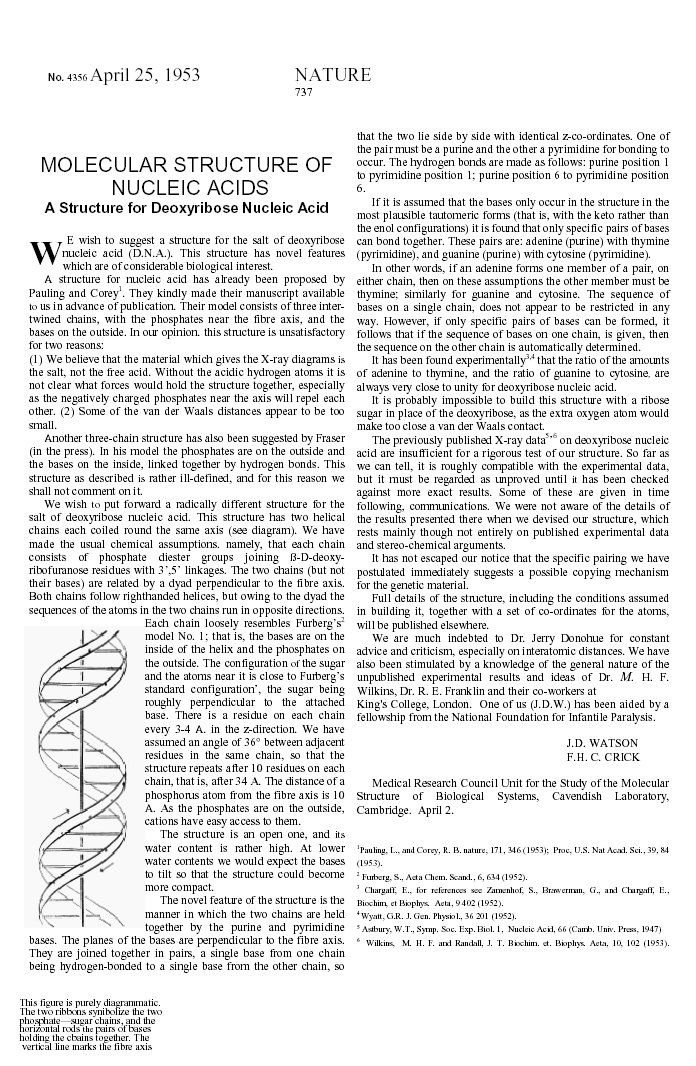 Copy Of Dna The Double Helix Coloring Worksheet Pdf Double Helix Helix Life Science