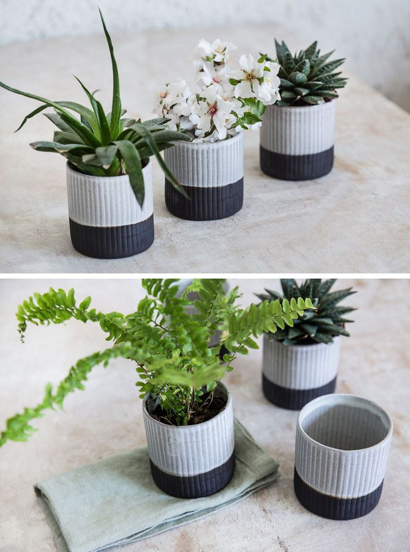 A ribbed texture on the exterior of these modern black and white ceramic planters gives them an organic look
