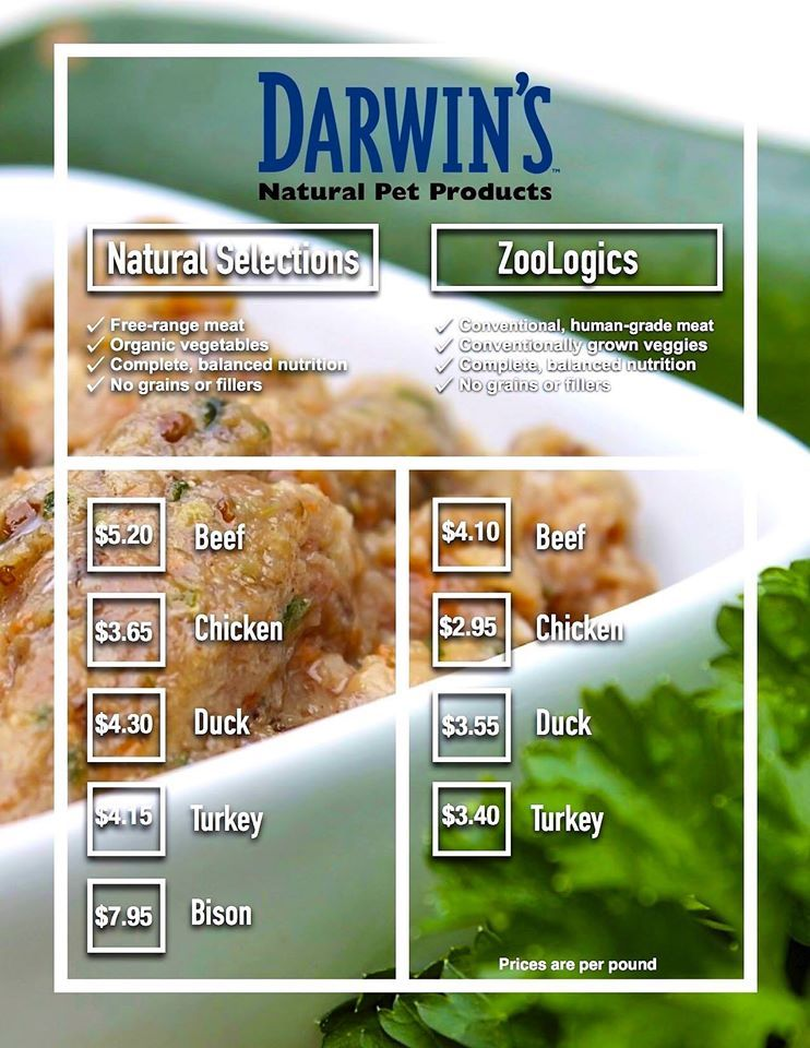 Why Darwin's Dog food recipes, Raw food recipes, Dogs of
