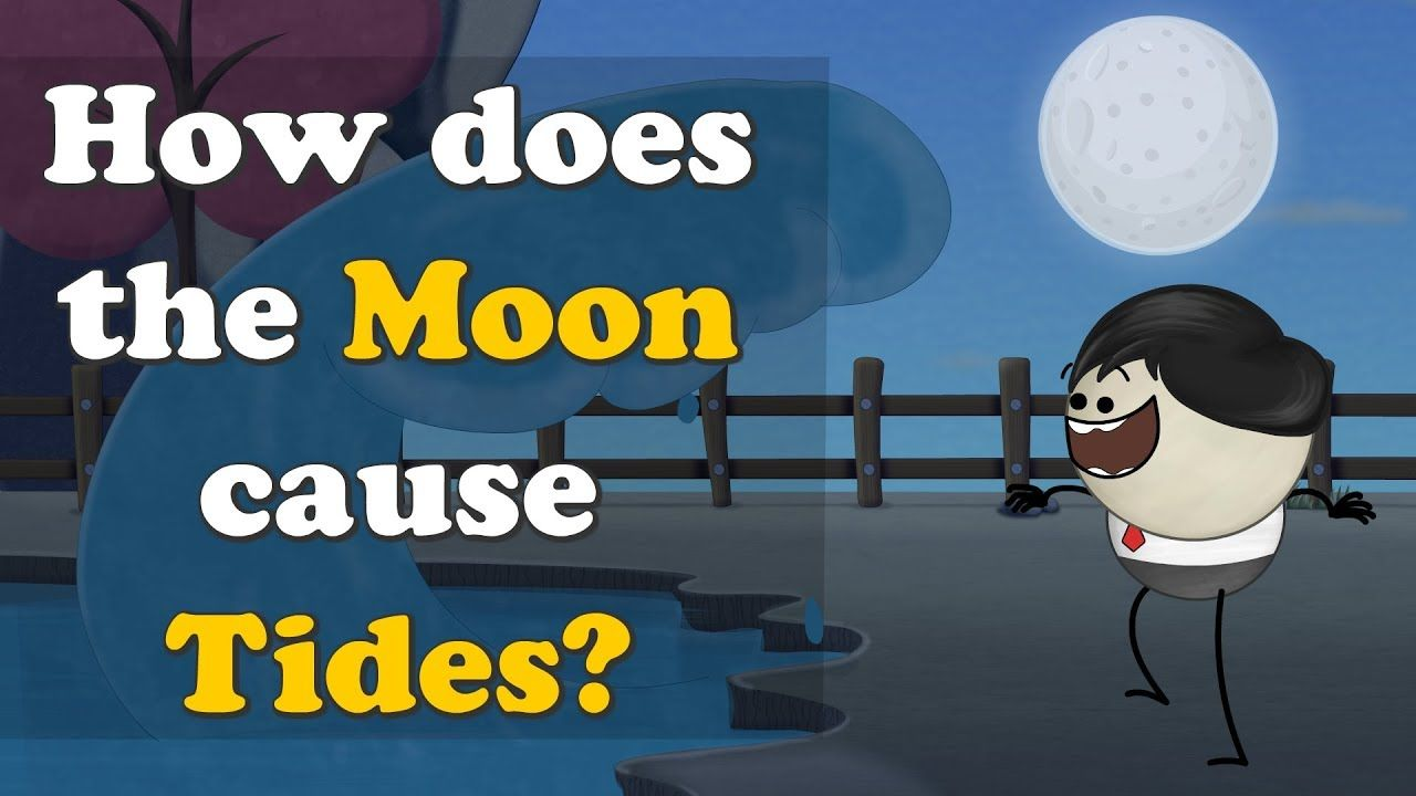 How does the Moon cause Tides? | #aumsum #kids #education ...