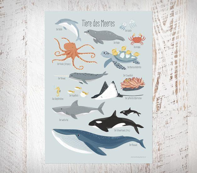 Meerestiere, Poster A3 | Versenden, Rollen und Poster