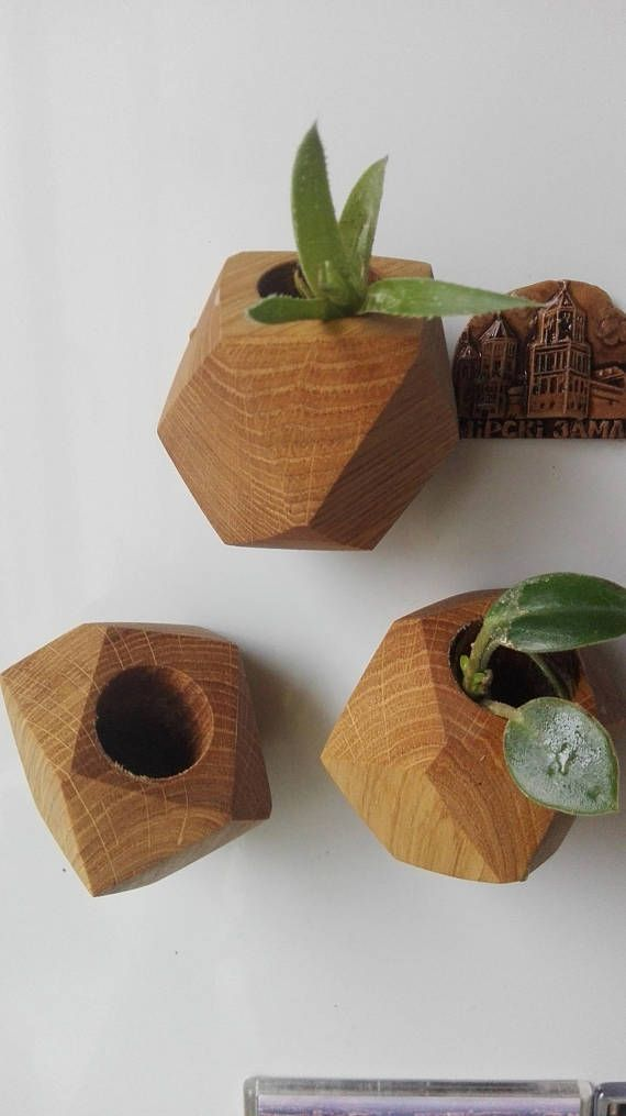 Geometric Wood Planter Succulent Planter Magnetic Mini Air Plant