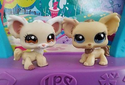 Littlest Pet Shop Puppy Cream Chihuahua Dog Brown 96 1199 1171