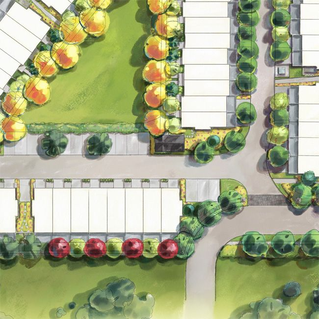 RenderedSitePlan site plan rendering – Rendered Site Plan