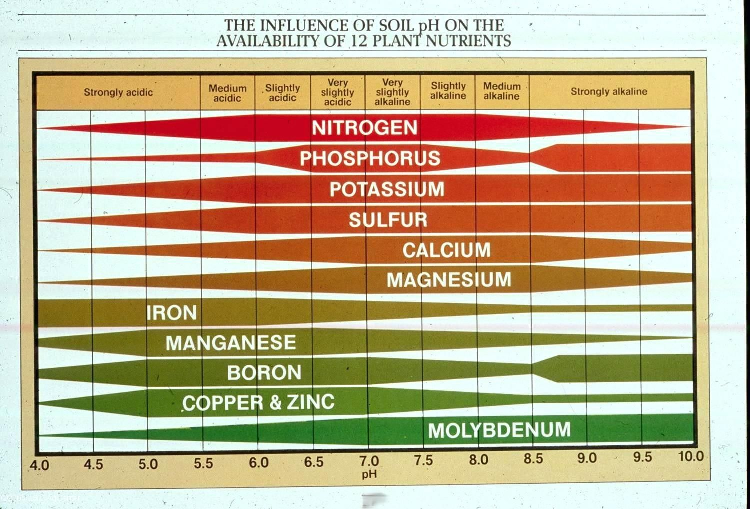 Ph Soil Chart  Yahoo Image Search Results  Garden Hints And