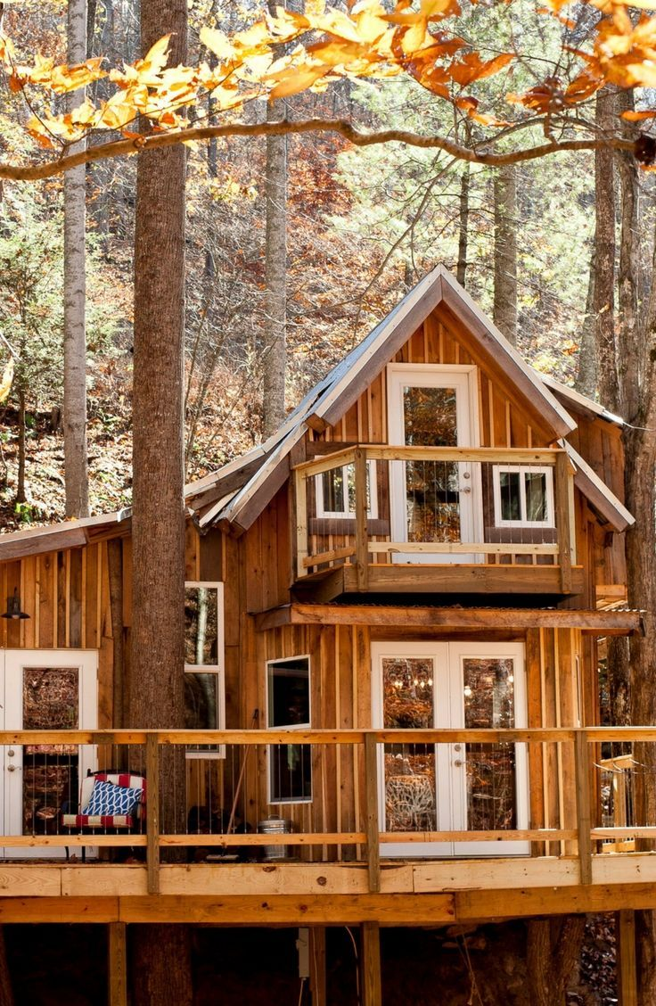 Eco Friendly Elevated Cabin Rental For A Tree House