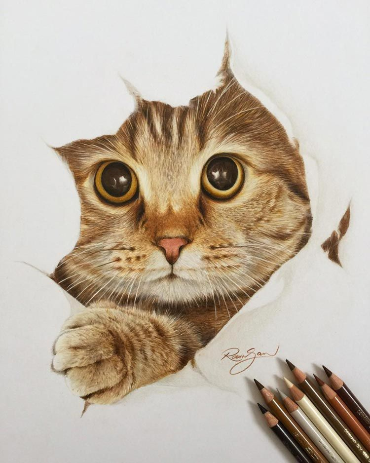 Les Dessins Très Réalistes De L Artiste Robin Gan Illustrations