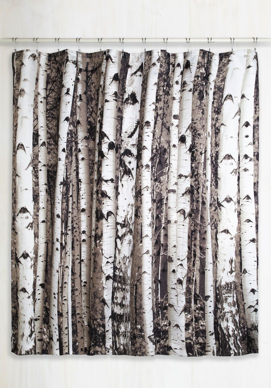 Beyond The Grove Shower Curtain In Winter Birch By Kikkerland   Multi,  Rustic, Good